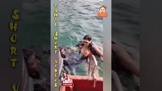 HOT Sanjana singh swimming   Tamil short videos    Tamilshortvideos