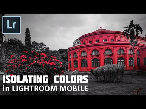 How to Edit in Lightroom Mobile   Isolating Colors   Color Splash   Android   iPhone