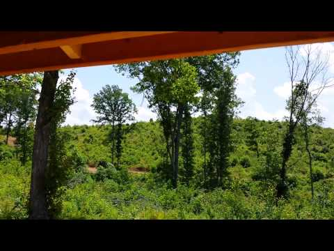 Cabin for sale on 25 acres in Jackson County Ohio