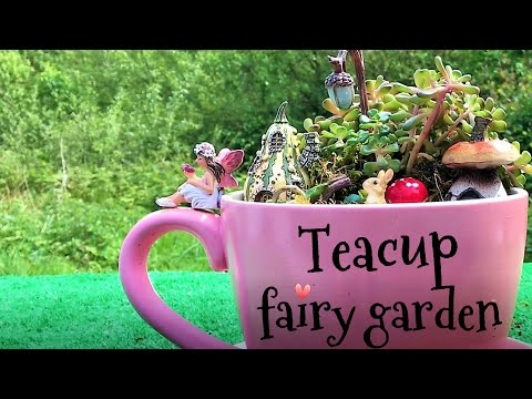Teacup fairy garden. Cute miniature fairy garden.
