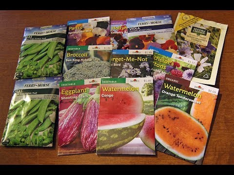 Garden Seed Haul From A Big Box Store-Vegetables-Flowers-Burpee Seeds And More