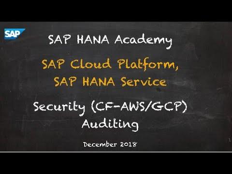 [2.0 SPS 04] SAP HANA Service, Security, Auditing (CF) - SAP HANA Academy