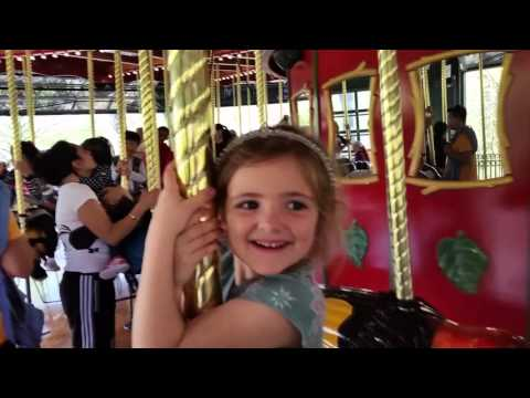 Merry-Go-Round at the Bronx Zoo