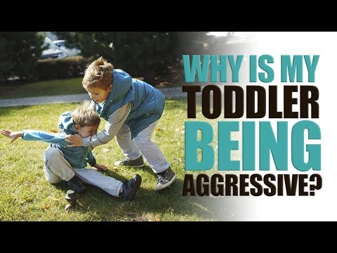 Why is my Toddler Being Aggressive?