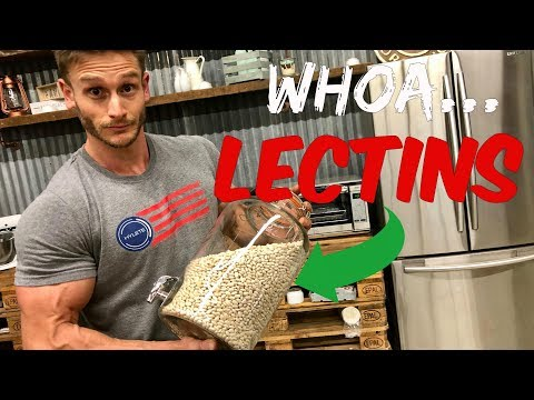 Are Lectins Making Your Carbs Unhealthy