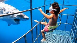 Tiburón Bebé! 🤣😂 Bebé Divertido Reacción A Los Peces 🐟🐠 Videos Graciosas
