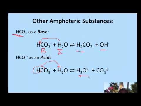 Amphoteric Substances & Conjugate Bases