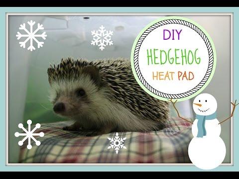 DIY Hedgehog Heat Pad
