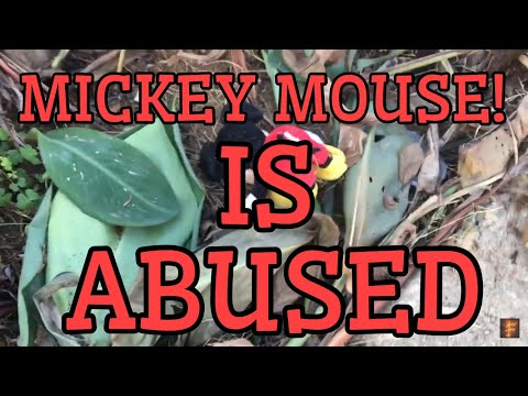 What happend to Mickey Mouse! (MUST WATCH)