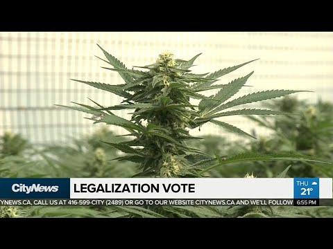 Senate to vote on pot legalization bill Thursday night