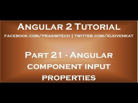 Angular component input properties