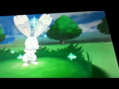 How to find a shiny pokemon without poke radar