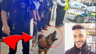 Police Took Me & ARRESTED 3 Of My Friends!! **brought dogs out**