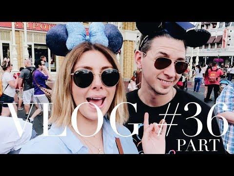 Walt Disney World Florida   Magic Kingdom, Animal Kingdom, Epcot & Hollywood Studios