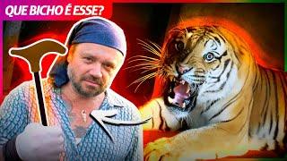 TIGRE DE BENGALA, O MAIOR FELINO DA TERRA! | RICHARD RASMUSSEN
