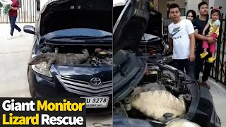 Couple find 5ft long monitor lizard in their car engine