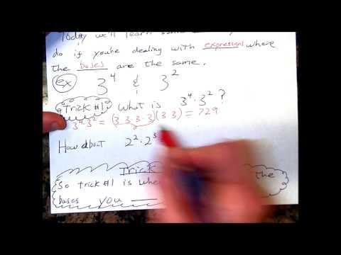 Pre Algebra 4 8