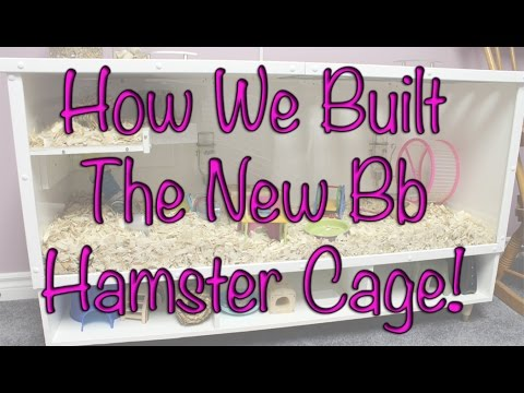 BudgetBunny: How We Built The New DIY Bb Hamster Cage