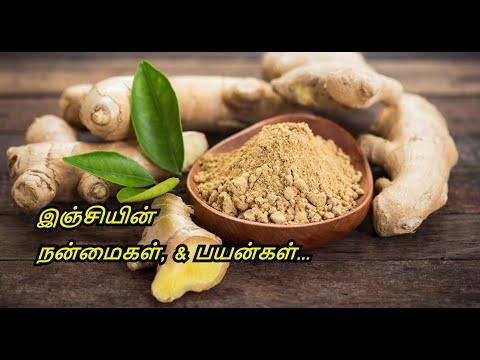 Benefits of Ginger | Ginger Tea | Ginger Juice | Inji Payangal | Healthy Life - Tamil.