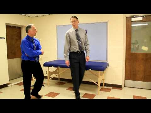 Top 3 Exercises to Increase Vertical Jump (Using Science) Dunk Aid