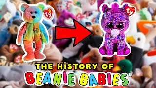 41b69f1ebd7 The evolution of TY beanie babies to beanie boos 1993 - 2018 ( The history  of