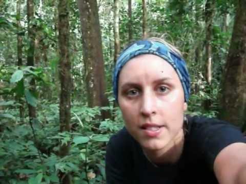 Ecuador, South America 2009 Video Diary : Inside The Amazon Rainforest
