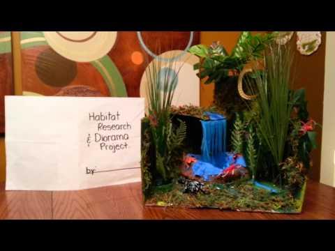 Habitat and Diorama Project