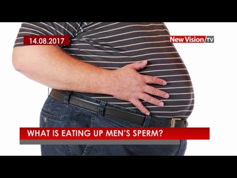 What is eating up men's sperm?