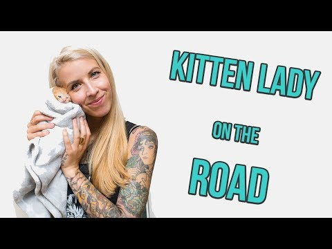 Kitten Lady on the Road!