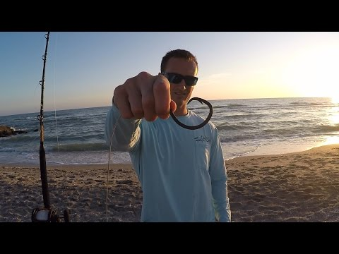 Bull Shark on Spinning Tackle from the Beach