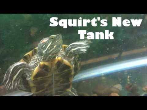 Squirt's New Tank