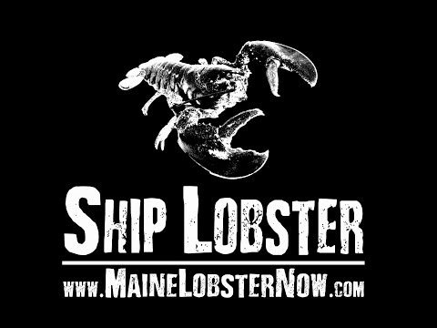 Maine Lobster Now - Owner Bio