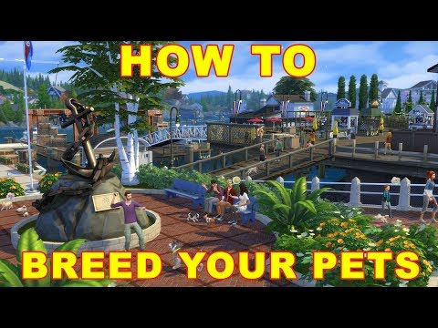 Sims 4 Cats & Dogs: How to Breed Pets
