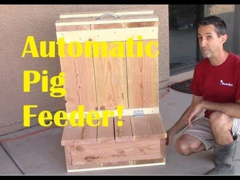 Automatic Pig Feeder