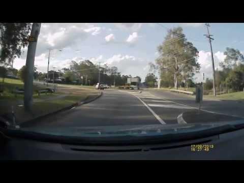 Deer at Oxley in Brisbane