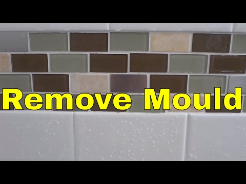 How To Remove Mould From Grout EASILY