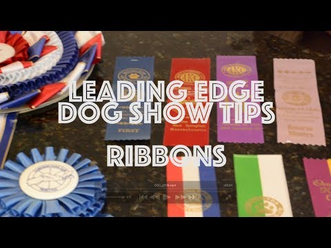 How Dog Show Ribbons Work