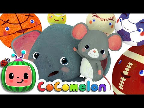 Sports Ball Song   Cocomelon  ABCkidTV  Nursery Rhymes  Amp  Kids Songs