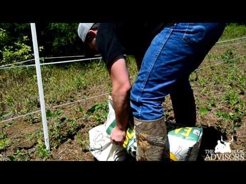Deer Food Plots | Dual Perimeter Electric Fence on Soybeans