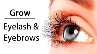 How To Grow Eyebrows Eyelashes Naturally Longer Thicker Faster