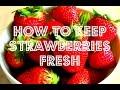 How to Keep Strawberries Fresh Using White Vinegar