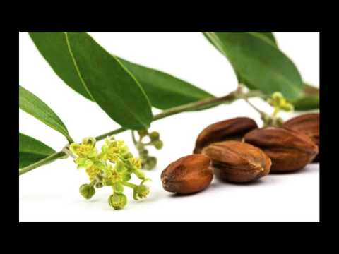 Jojoba Oil And Grapeseed Essential Oil Helps To Prepare Hair Serum At Home