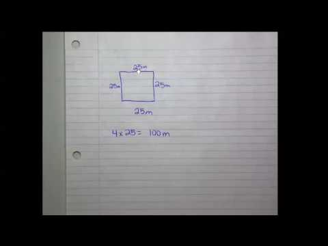 Perimeter of a square or a rectangle