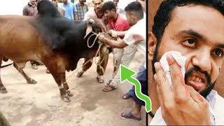 Eid ul azha Special 2018 | Bakra Eid | Qurbani Special | Pindi Boys Funny | Fukrey Production