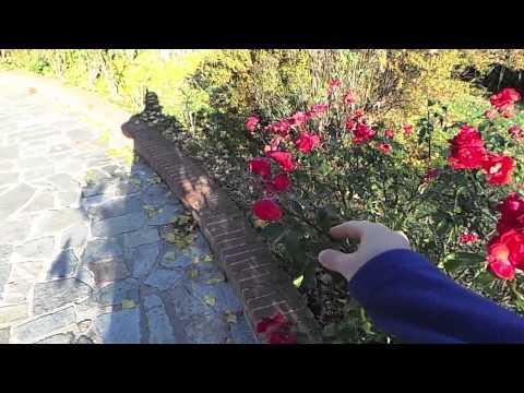 Samsung Galaxy Camera 720p slowmotion (60fps)