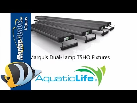 AquaticLife Marquis Dual Lamp T5 HO Light - Product Overview