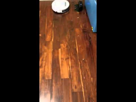 Rollitech BL618 Rollibot on very dirty hard wood floors