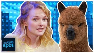 On The Spot: Ep. 131 - The Alpaca Show   Rooster Teeth