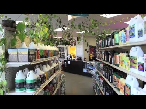 Akron Indoor Gardens Hydroponic Store Tour