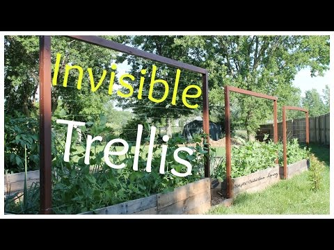Invisible Trellis - A cheap raised bed trellis system